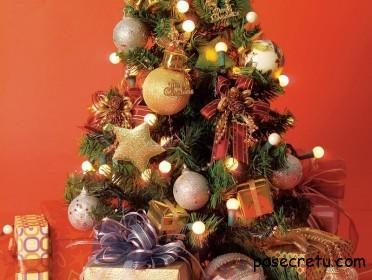Как украсить новогоднюю елку в 2013 году?